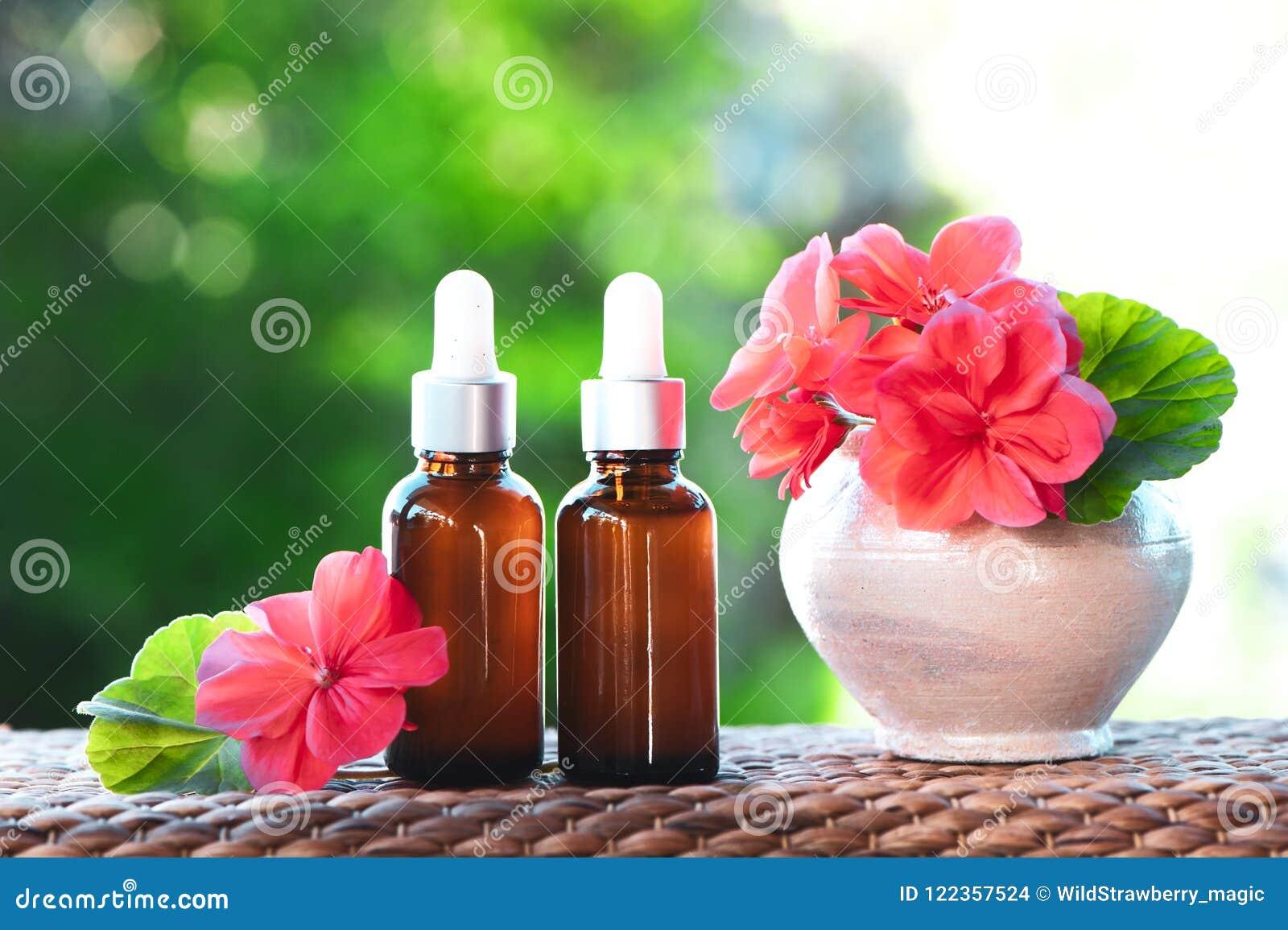 Botellas con aceite de geranio, la flor fresca y las hojas en un natural