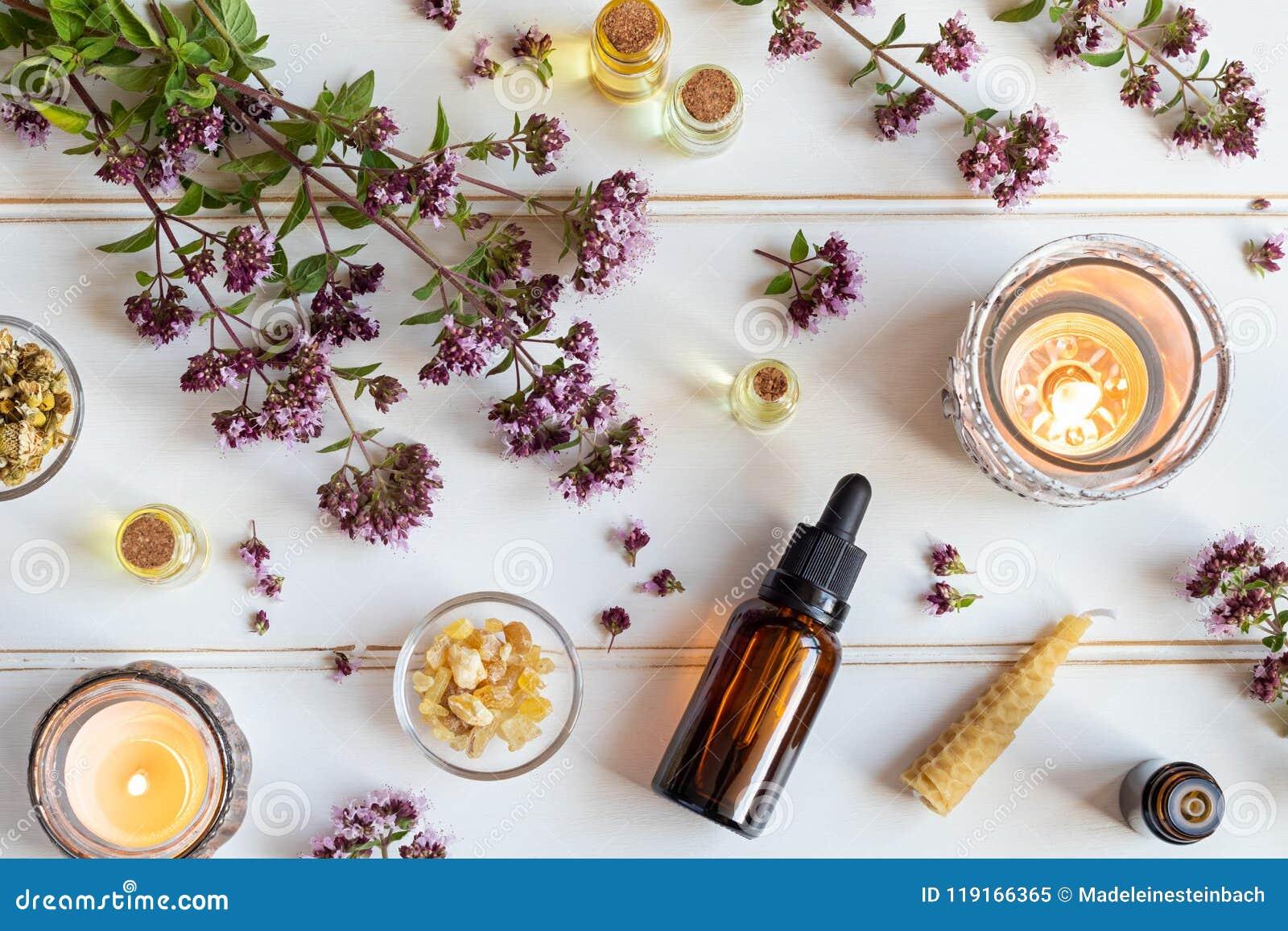 Botellas de aceite esencial con el orégano floreciente, incienso y