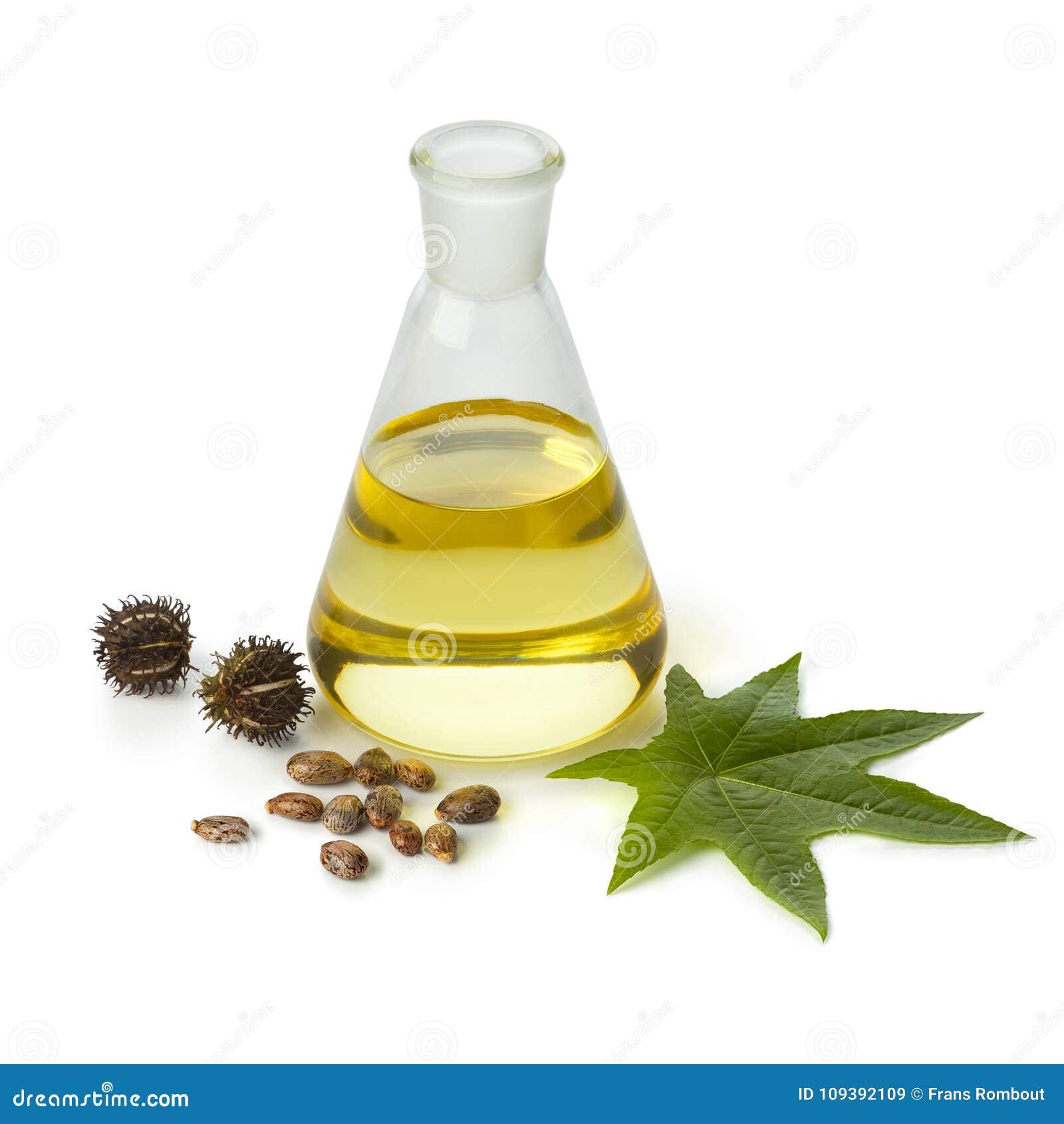 Botlle castor oil with fruit, seeds and leaf