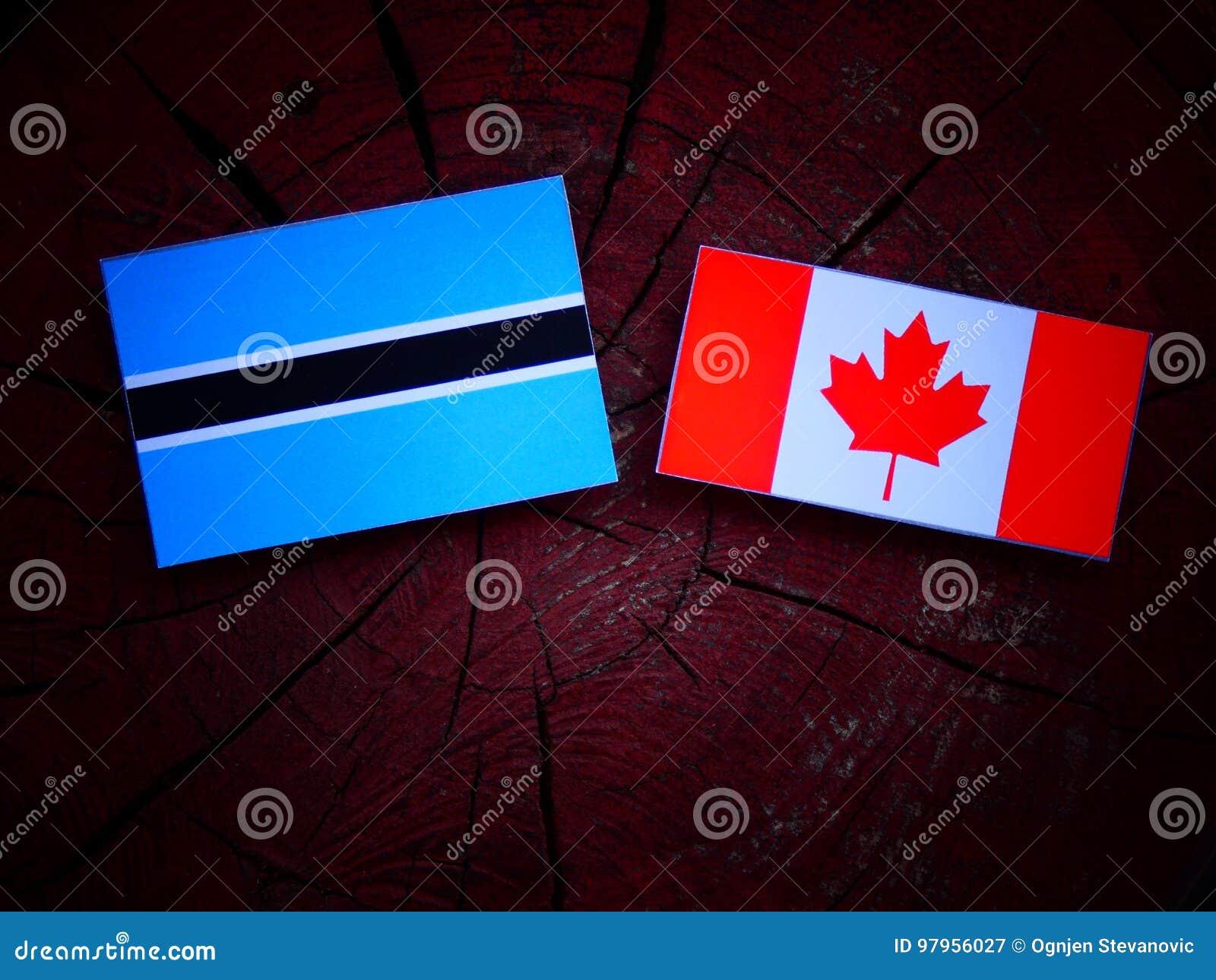 Botswana flaga z kanadyjczyk flaga na drzewnym fiszorku odizolowywającym