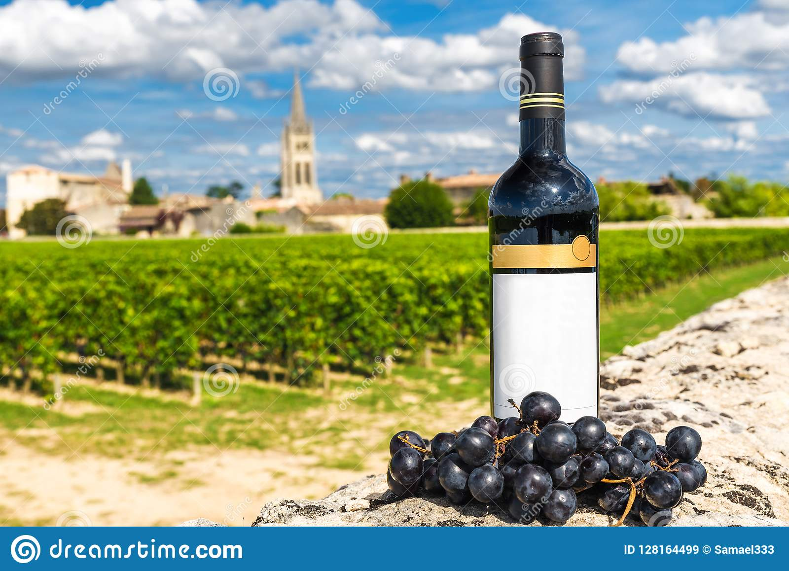 Bottiglia di vino rosso contro lo sfondo delle vigne di Saint Emilion, Bordeaux, Francia