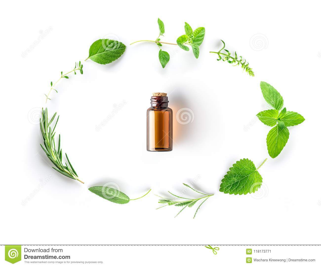 Bottle of essential oil with fresh herbal sage, rosemary, oregano, thyme, lemon balm, spearmint and peppermint setup with flat la