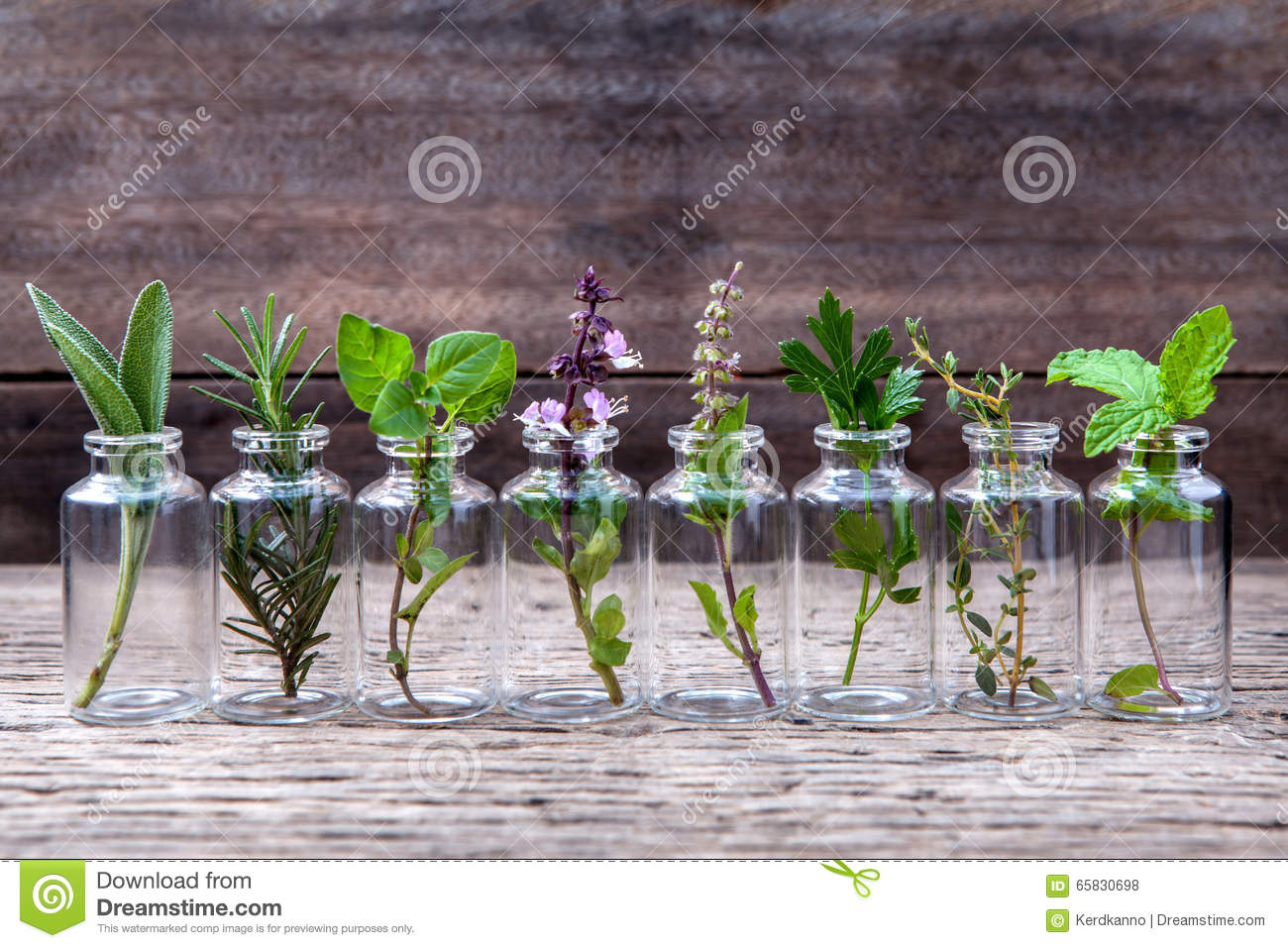 Bottle of essential oil with herbs holy basil flower, basil flow