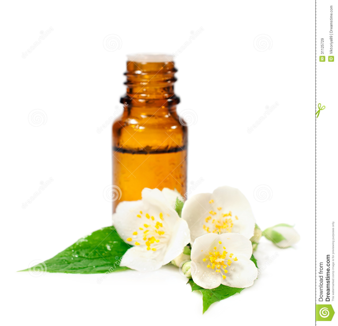 Bottle Of Essential Oil And Jasmine Flowers Stock Image Image Of