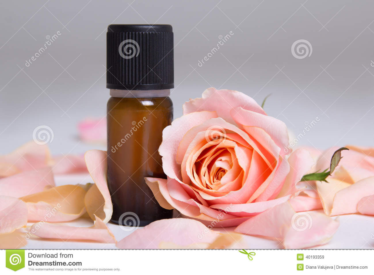 Bottle of essential oil and rose petals over grey stock photo image 40193359 - Rose essential oil business ...