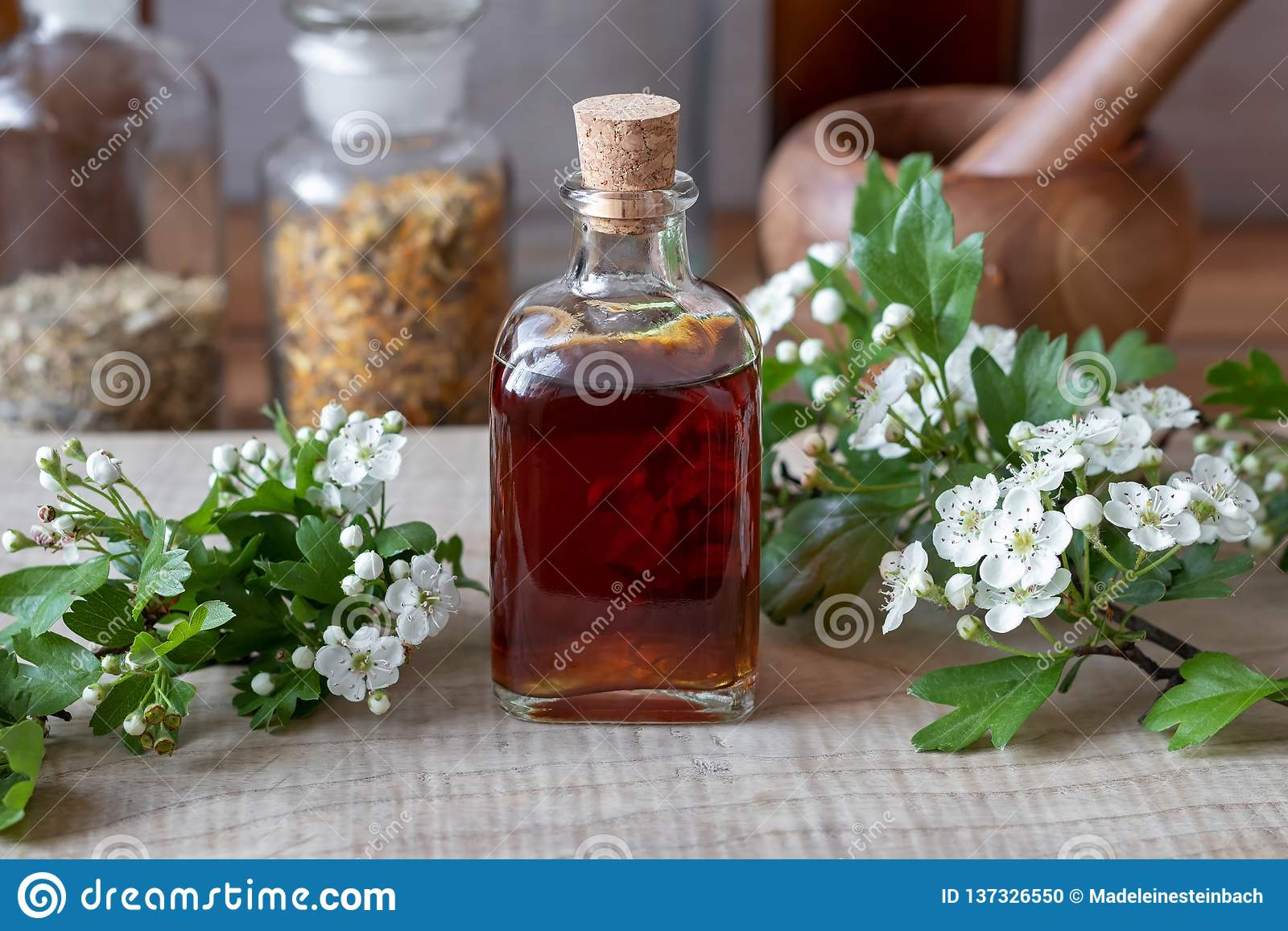A Bottle Of Hawthorn Tincture With Fresh Blooming Hawthorn Branches ... c9a6410fbd2b