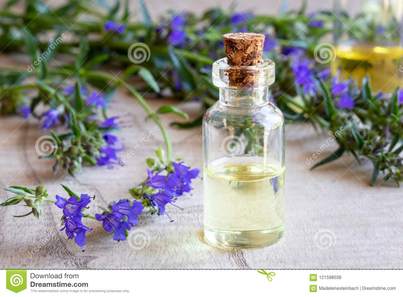 A bottle of hyssop essential oil with fresh blooming hyssop