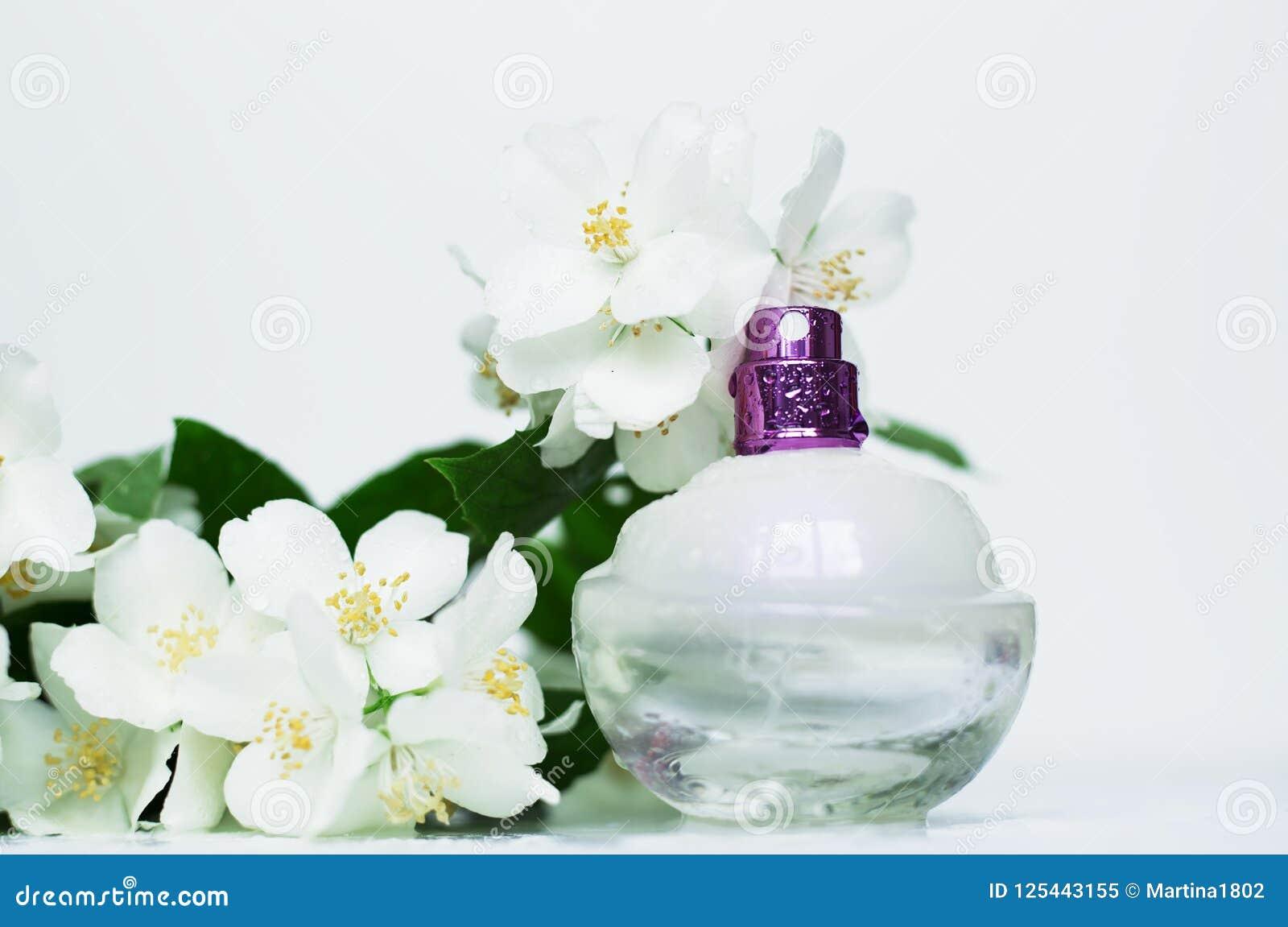 Perfumery Stock Image Image Of Gift Design Lady Glass 125443155