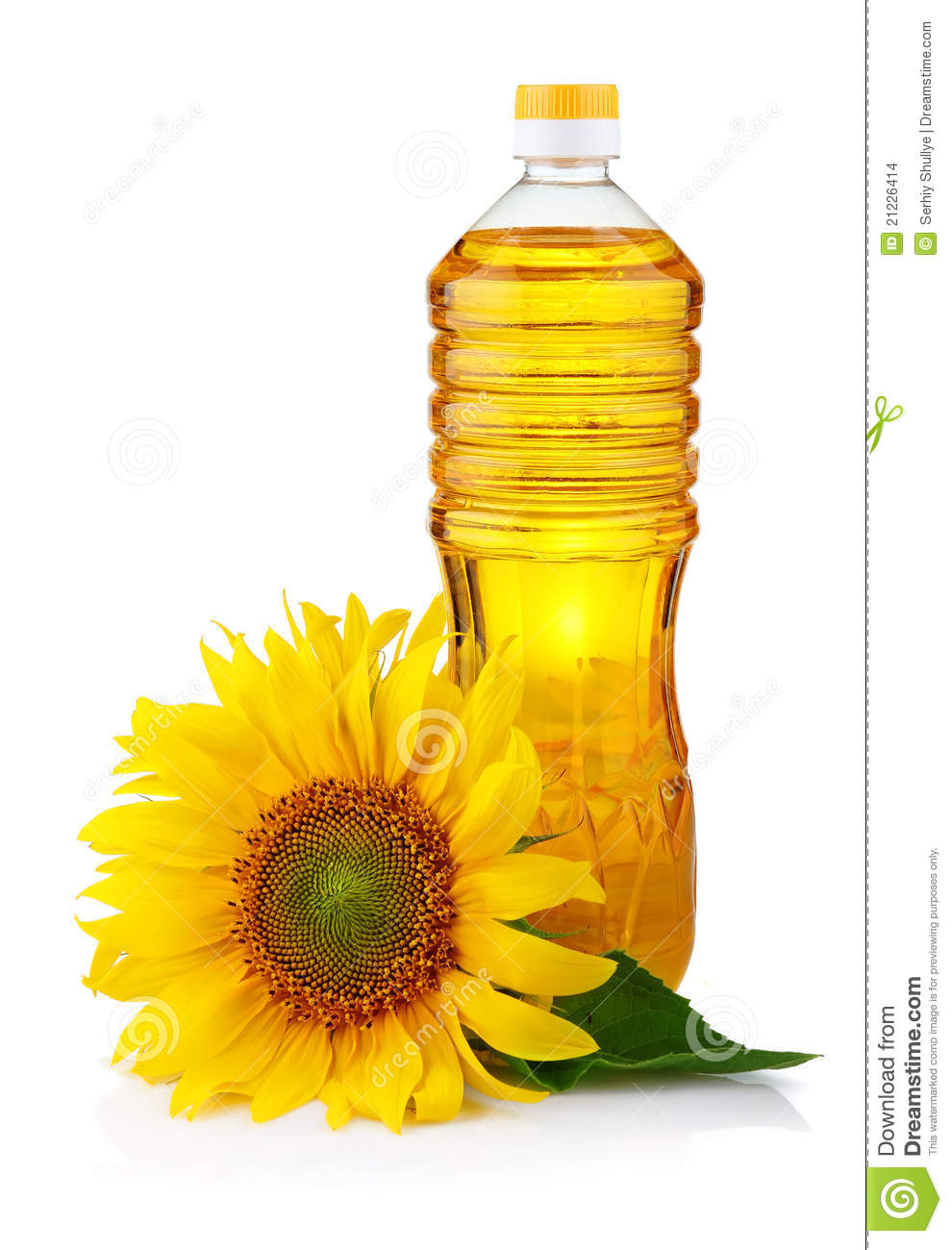 Bottle of sunflower oil with flower isolated