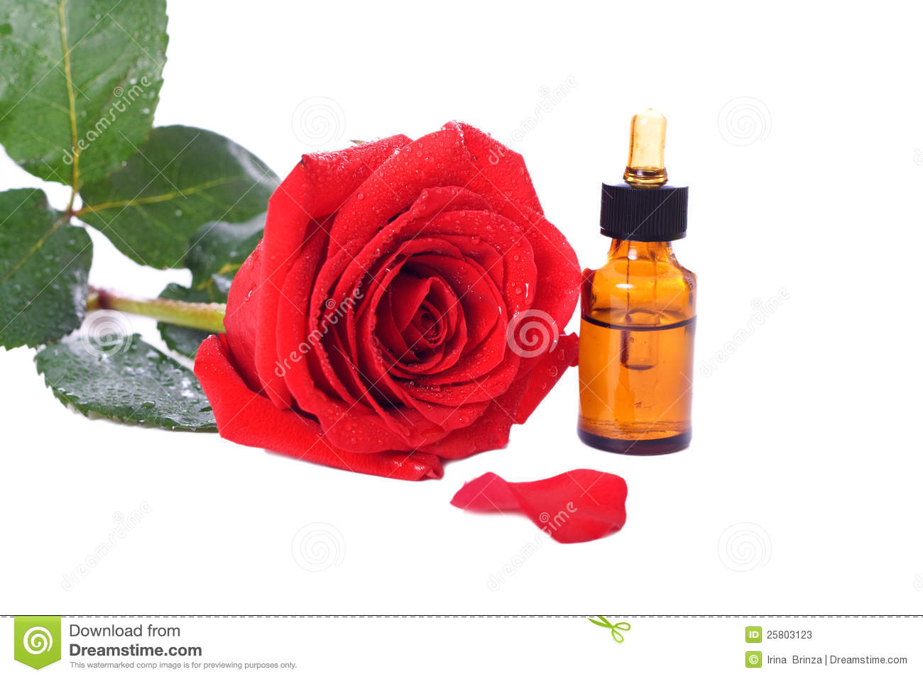 Bottles of essential oil and red rose stock photos image 25803123 - Rose essential oil business ...
