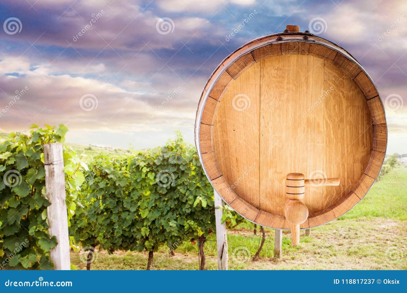 Wine barrel mock up