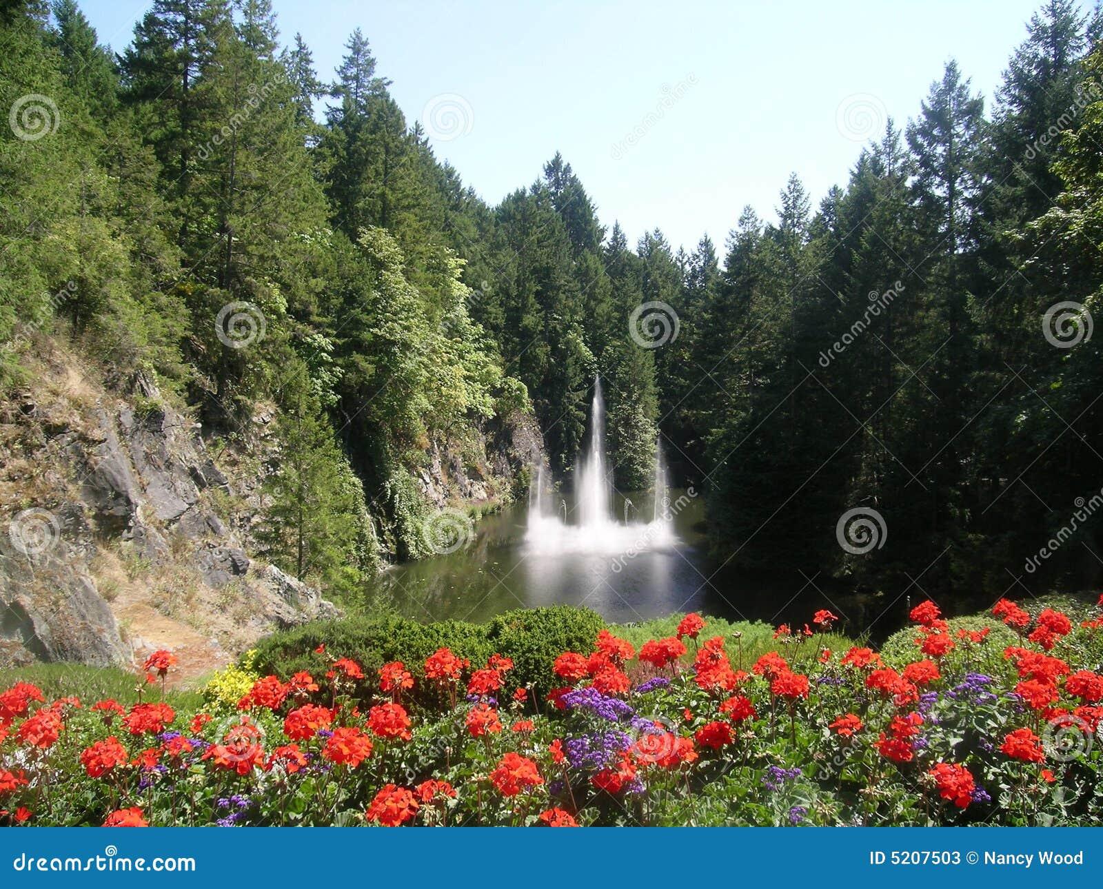 bouchard gardens stock image  image of victoria  waterfalls