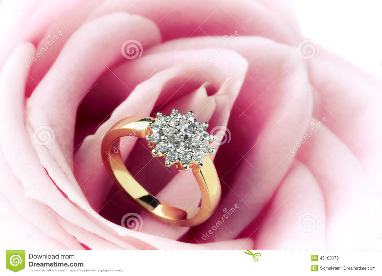 Boucle et Rose de diamant