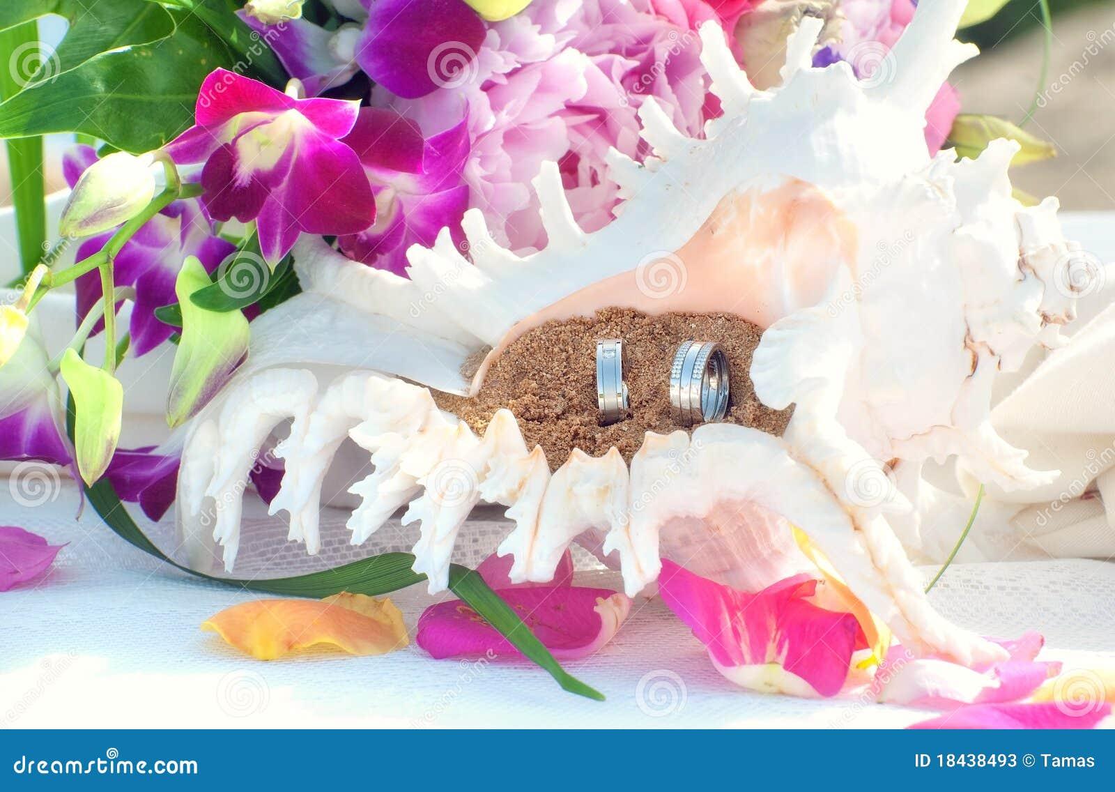 Boucles de mariage dans le seashell