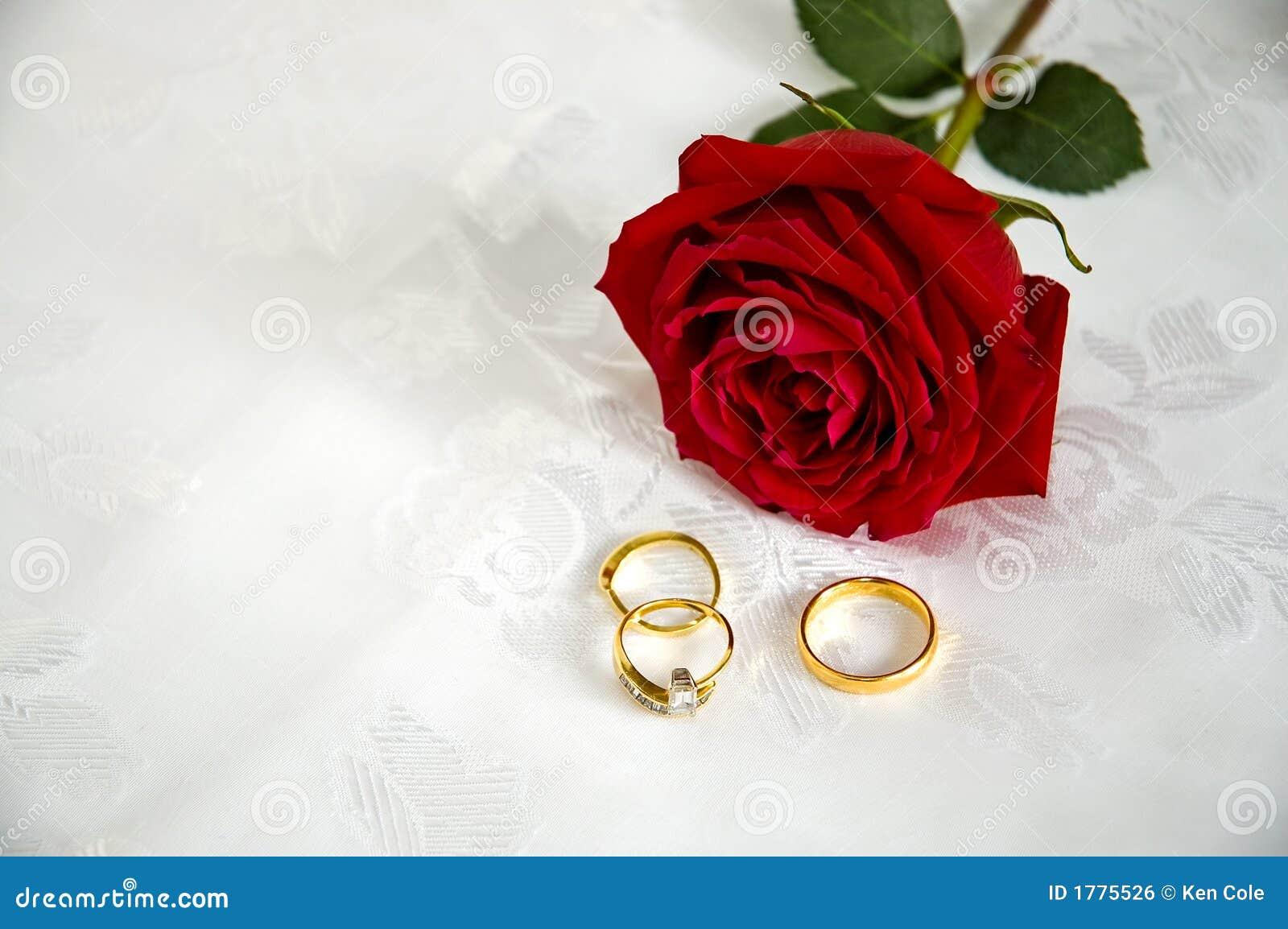 Boucles et roses