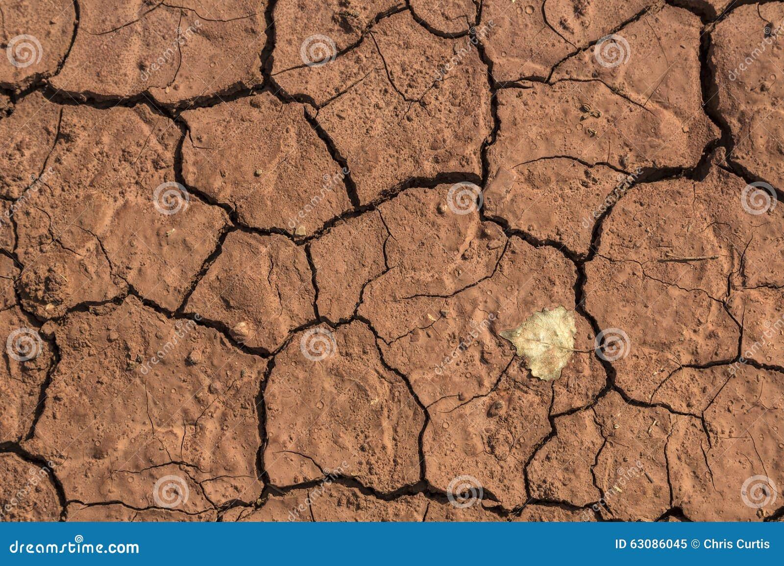 Download Boue Criquée Rouge Sèche Avec Une Feuille Simple Image stock - Image du heat, érosion: 63086045
