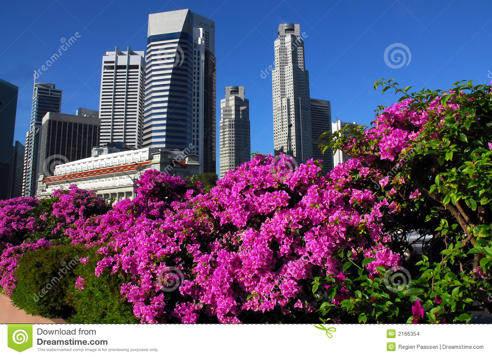 Bougainville singapore skyline