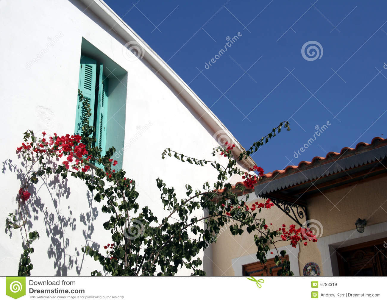 Bougainvillea and shutters