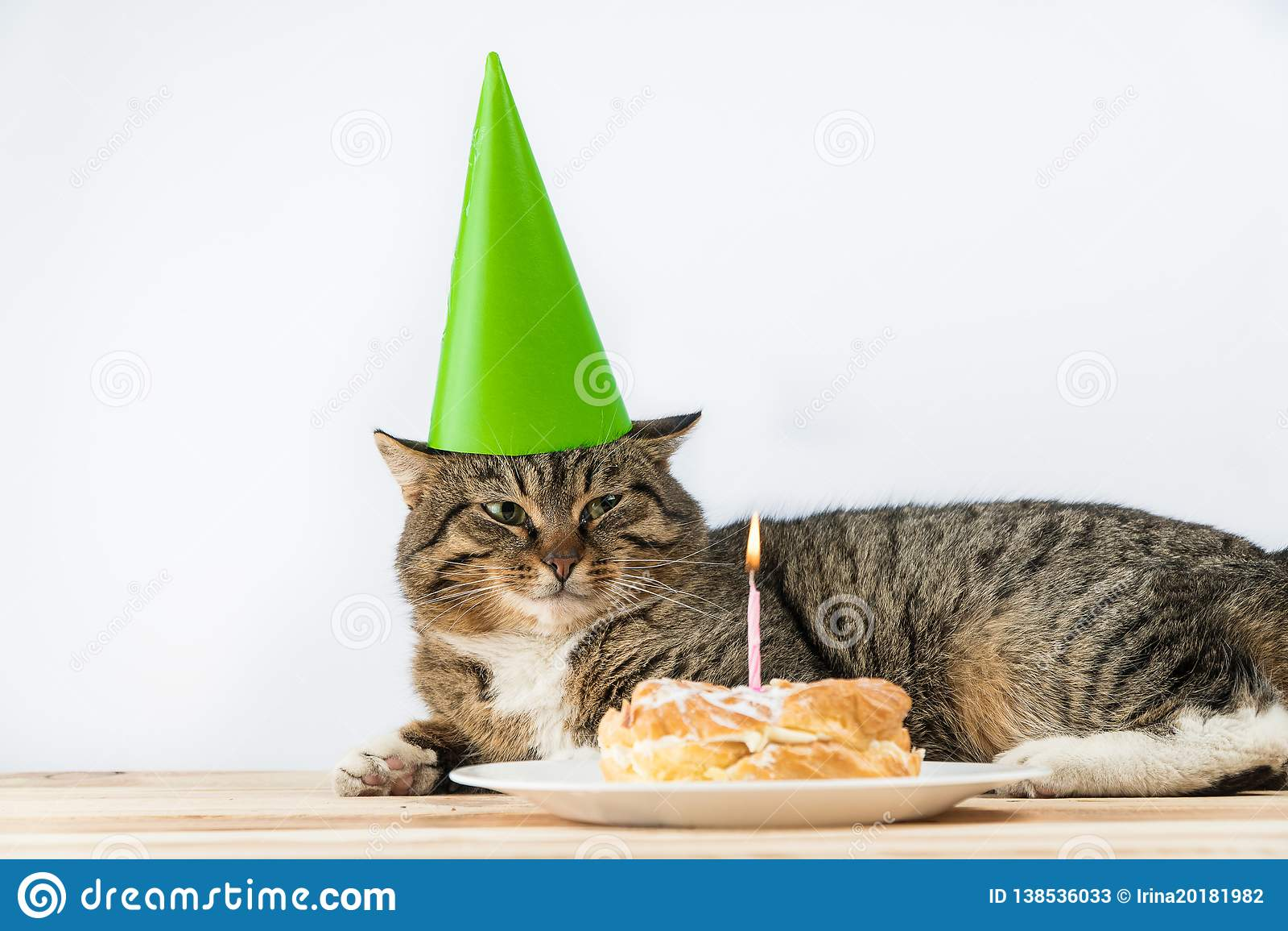 Bougie de gâteau d anniversaire de chat Anniversaire de gâteau