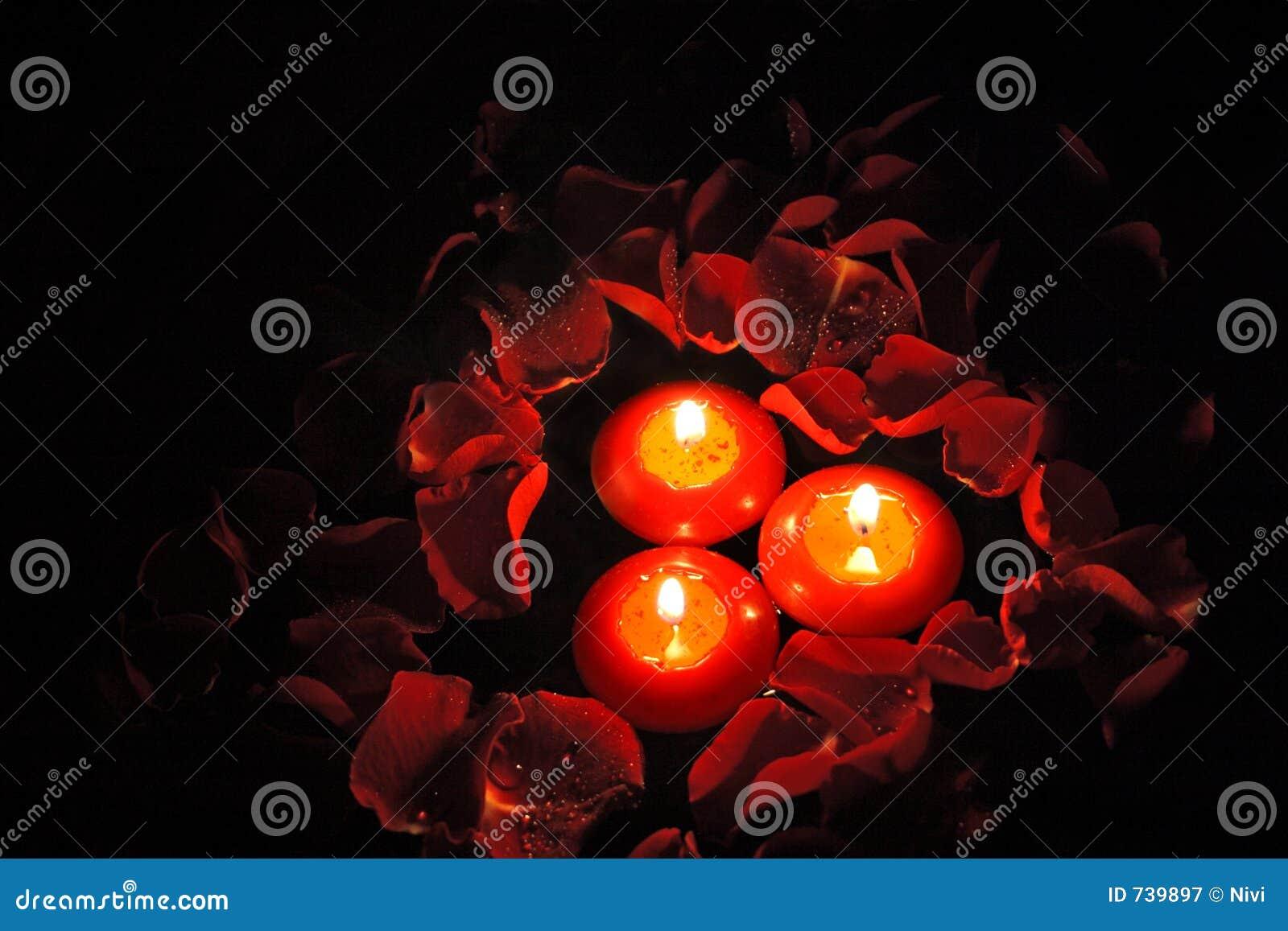 Bougies avec les pétales roses _1