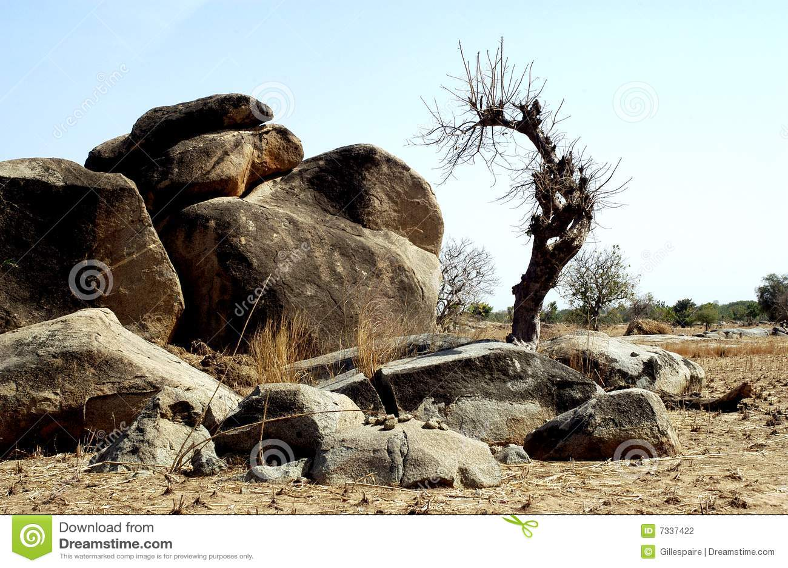 Boulders in savanna landscape stock photo image 7337422 for Landscaping rocks savannah ga