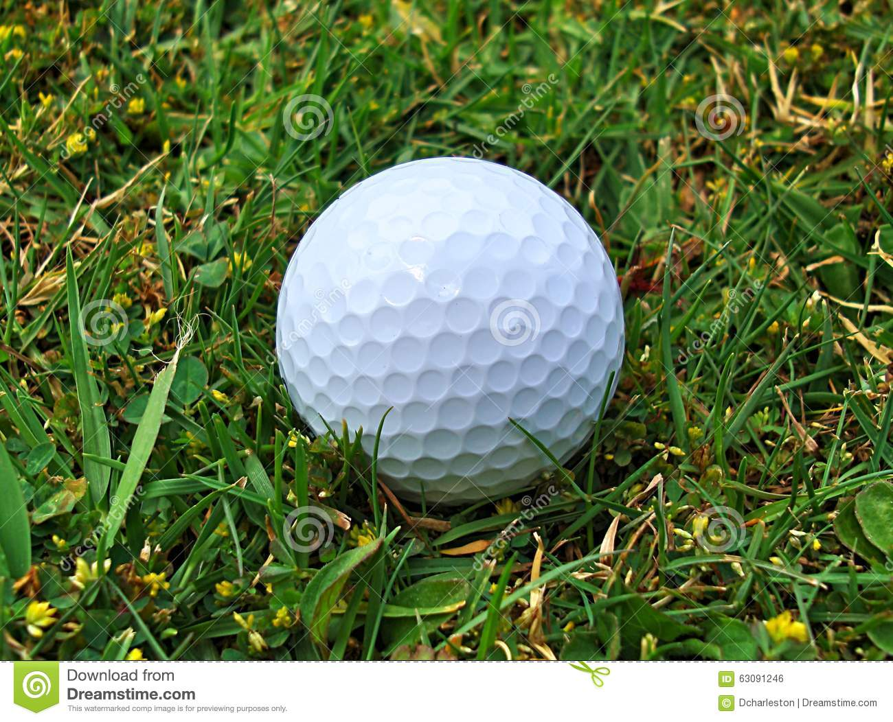 Download Boule de golf (fin) photo stock. Image du golf, gestionnaire - 63091246