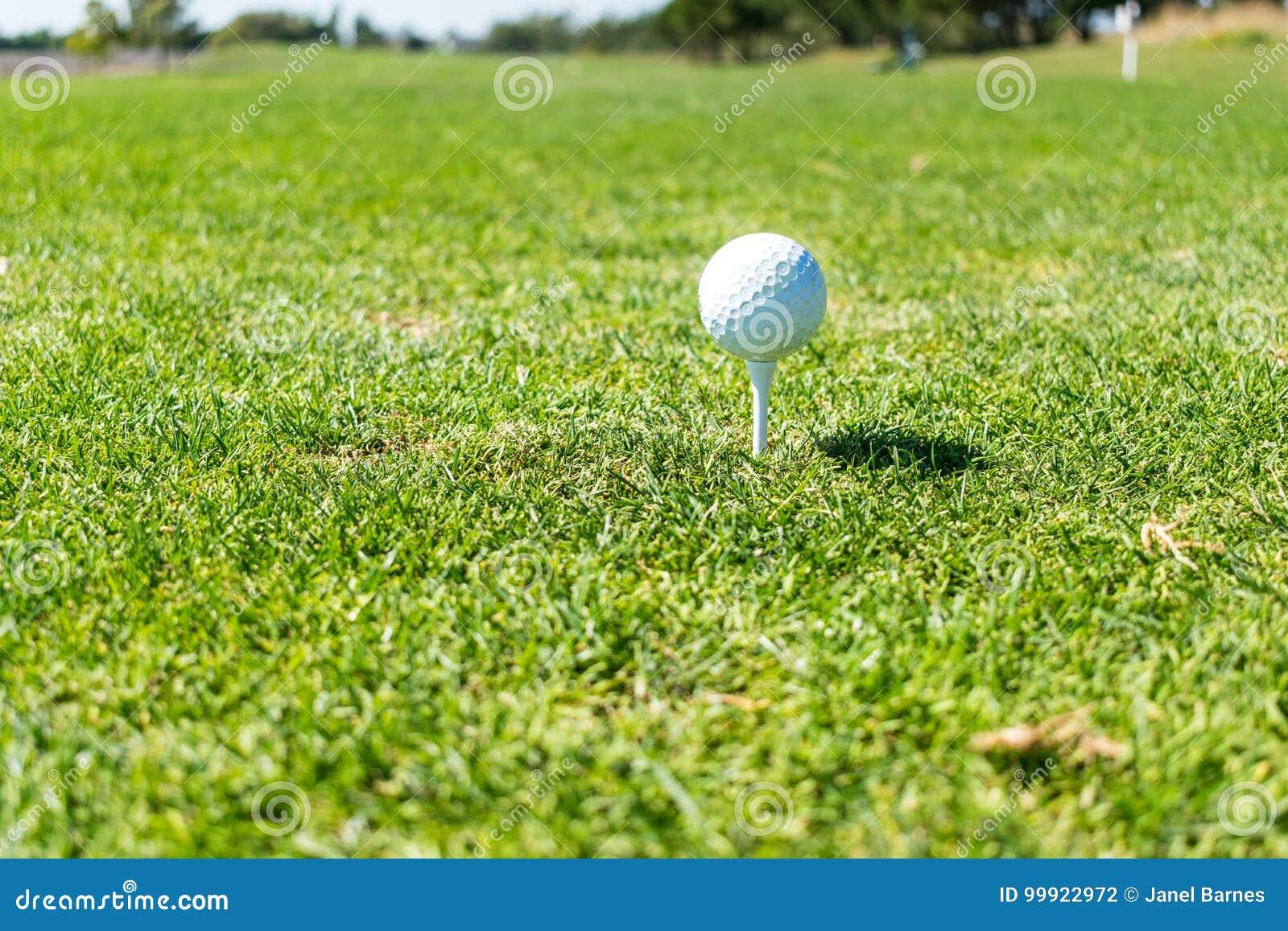 Boule de golf prête à piquer sur la pièce en t au terrain de golf
