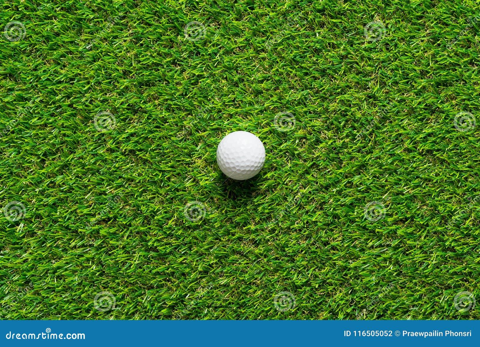 Boule de golf sur la texture d herbe verte du terrain de golf pour le fond