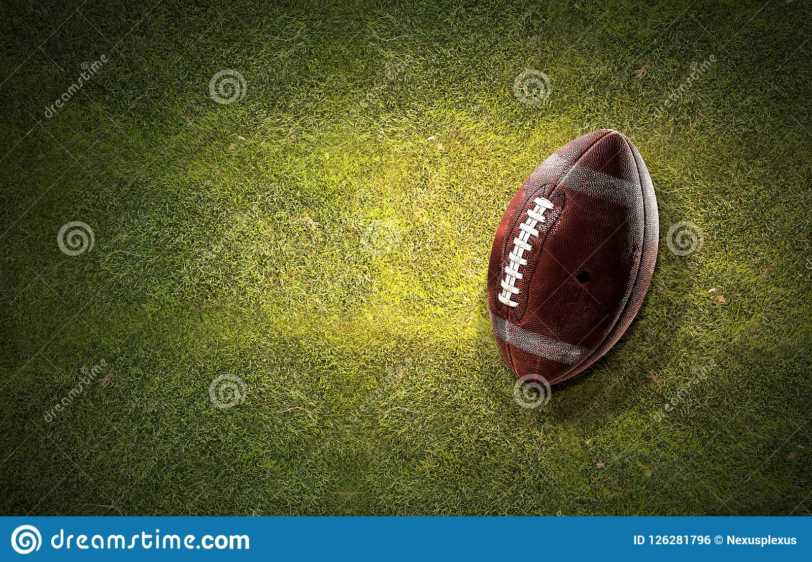 Boule de rugby sur l herbe