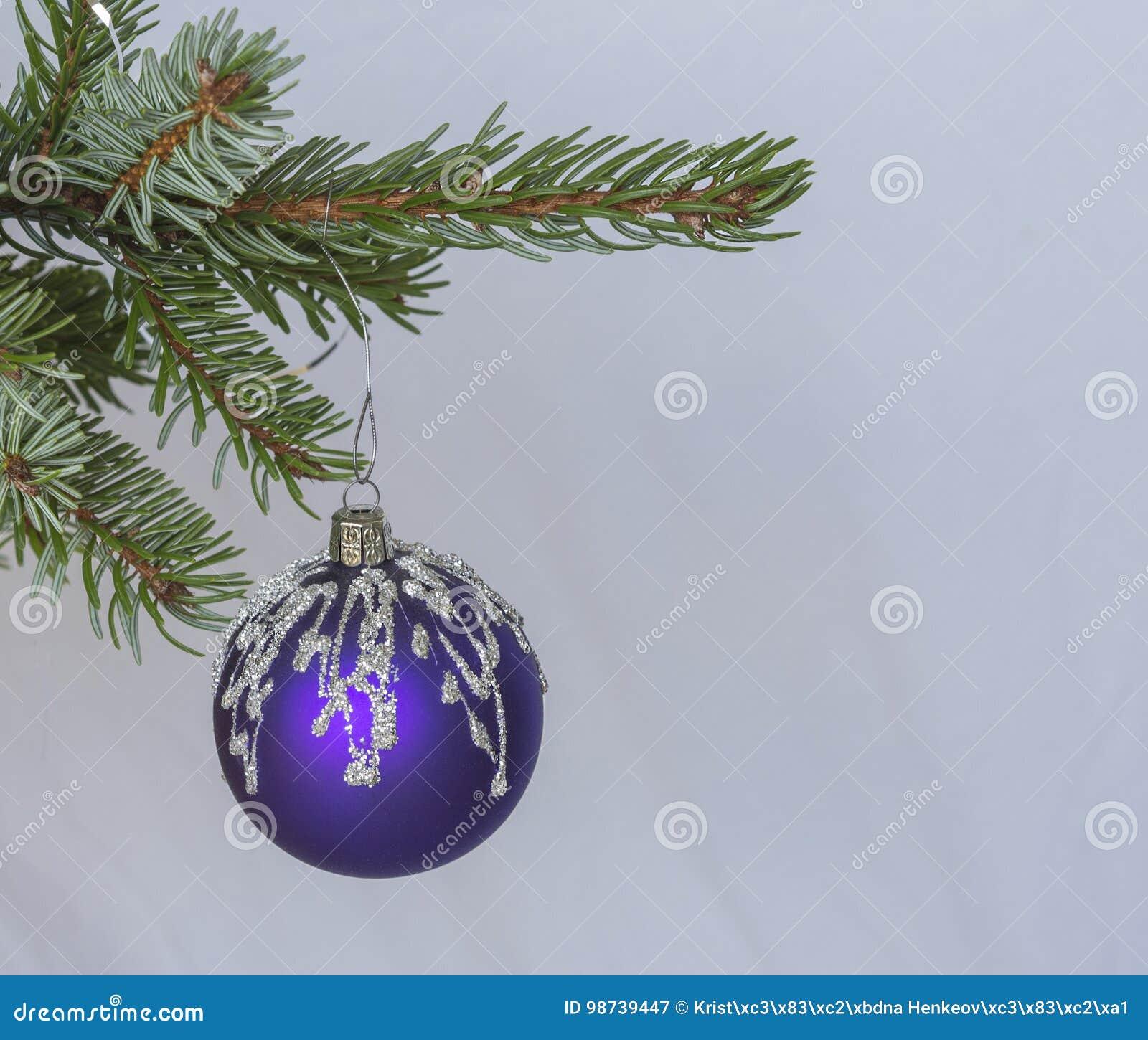 Branche D Arbre Sapin De Noel boule de velours de décoration de noël sur la branche d