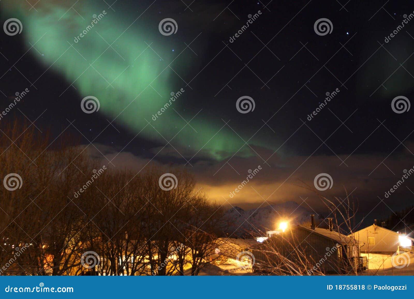 Bouleaux de lumi re nordique et maisons de la norv ge Maison de la scandinavie et des pays nordiques