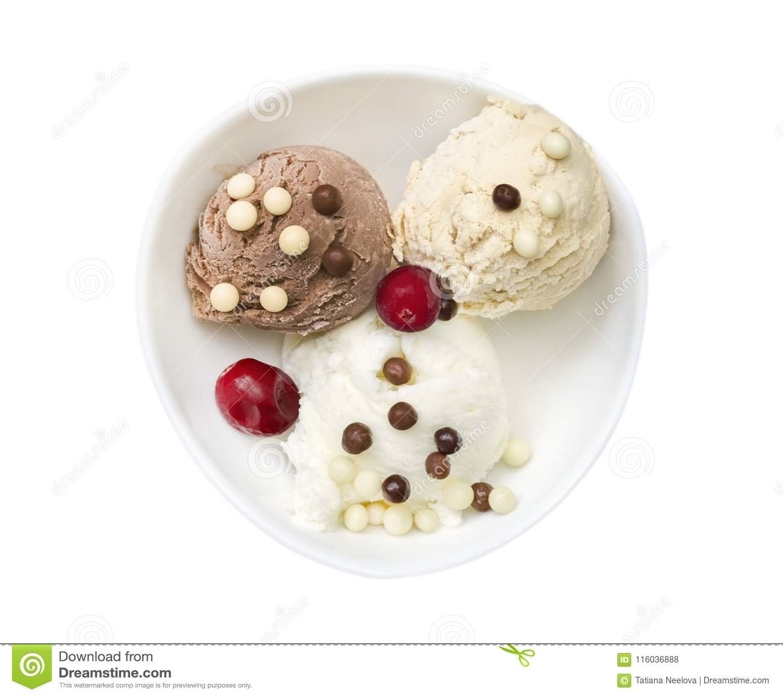 Boules de crème glacée de vanille et de chocolat et miettes de chocolat avec la canneberge Crème glacée savoureuse de crème brulé