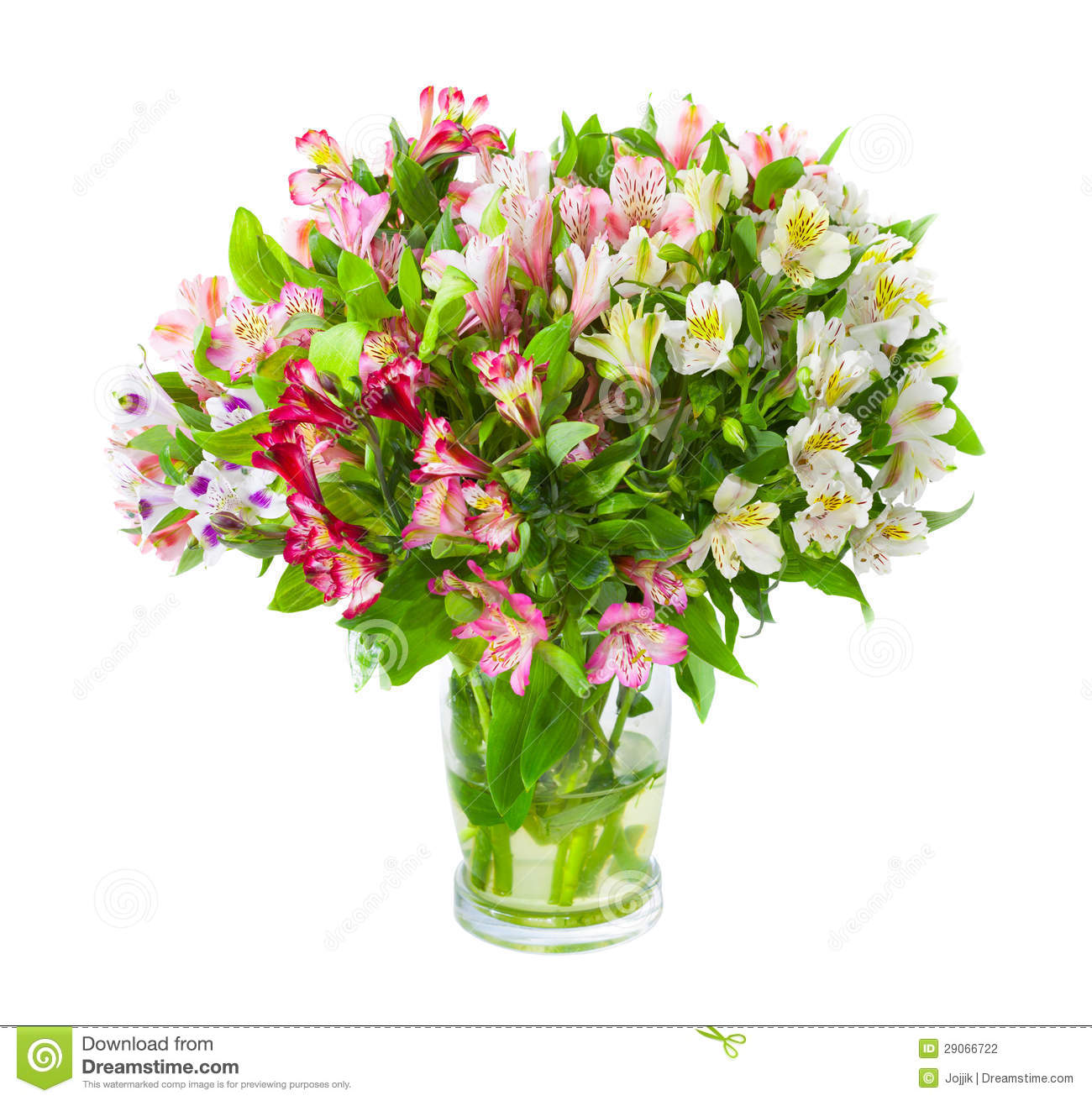 Bouquet of alstroemeria flowers in glass vase stock photo image of download bouquet of alstroemeria flowers in glass vase stock photo image of bouquet gift izmirmasajfo
