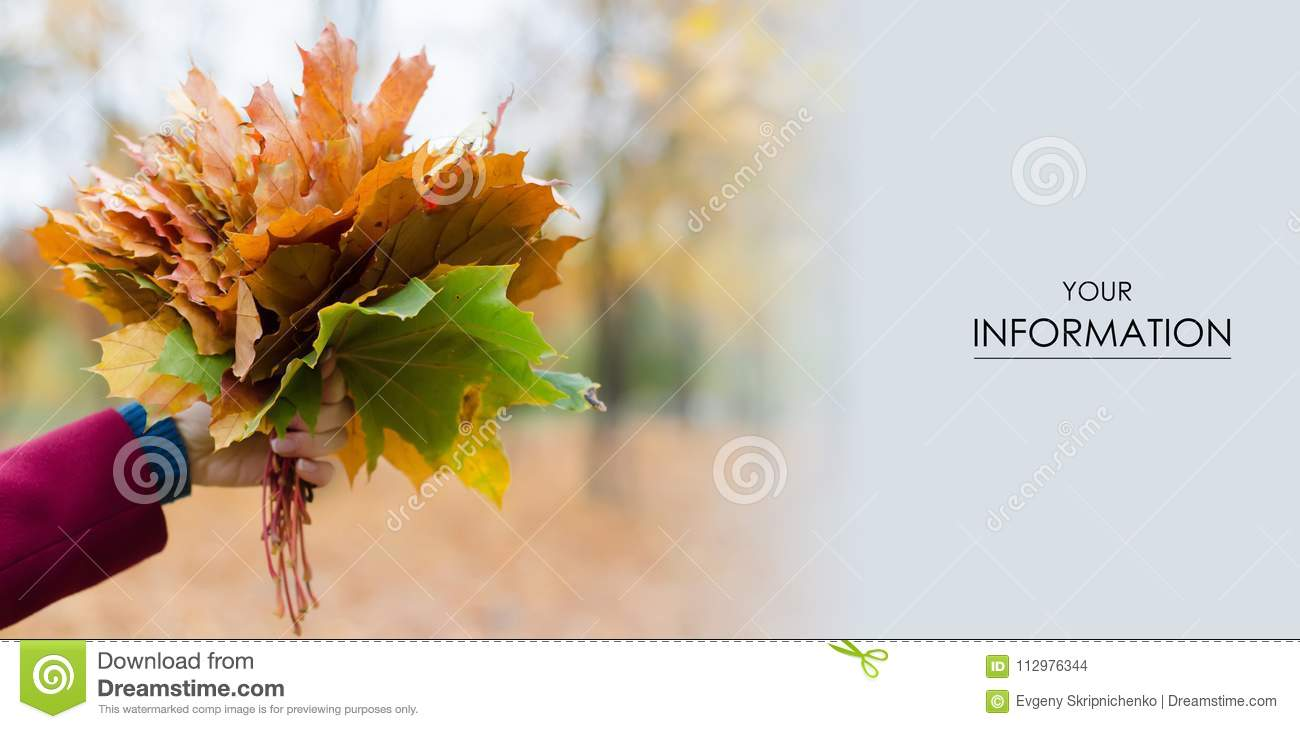 Bouquet of autumn leaves in hand pattern