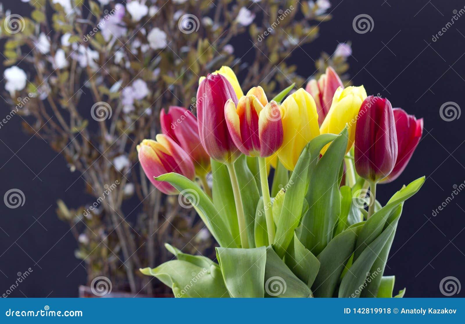 Bouquet avec des tulipes