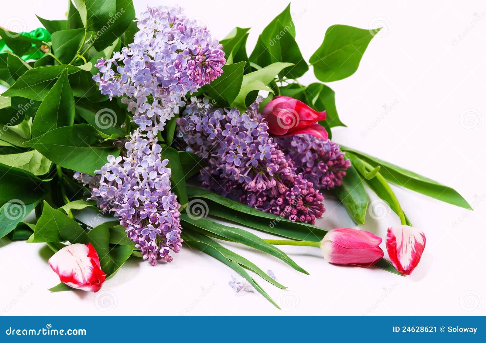 Bouquet avec le lilas et les tulipes image stock image for Bouquet de fleurs lilas