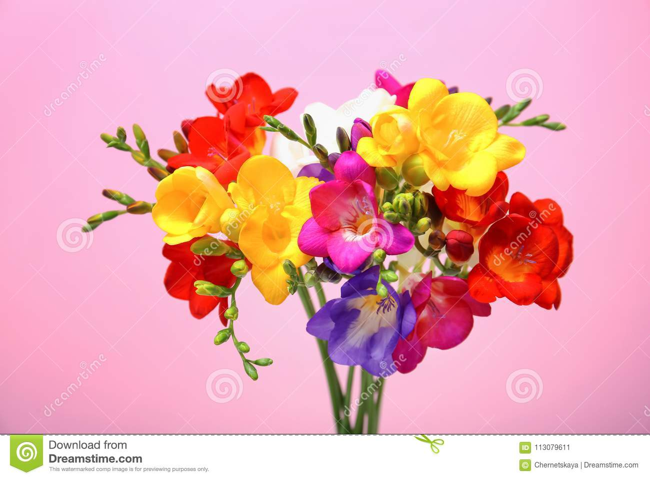 Bouquet with beautiful freesia flowers stock image image of download bouquet with beautiful freesia flowers stock image image of blossom decor 113079611 izmirmasajfo