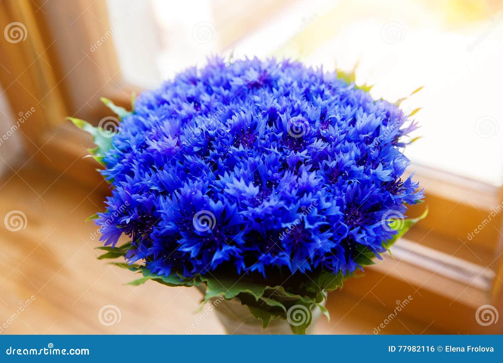 A Bouquet Of Beautiful Spring Flowers Blue Cornflower Cyanus On