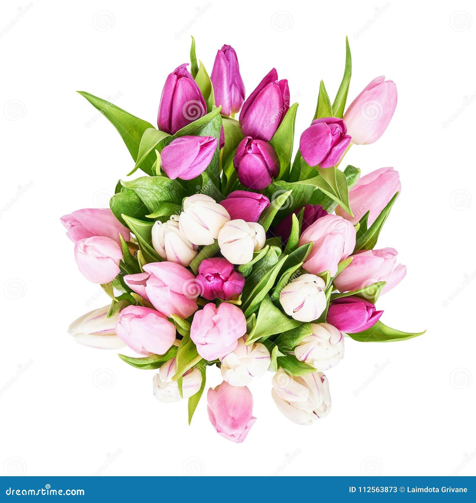 Bouquet blanc et rose de tulipes d isolement au-dessus du fond blanc Copiez l espace, vue d en haut Anniversaire, jour de mères,