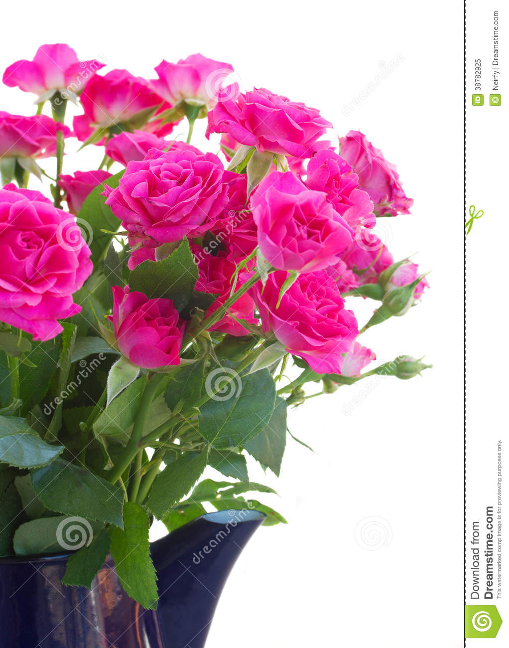 Bouquet of blossoming pink roses