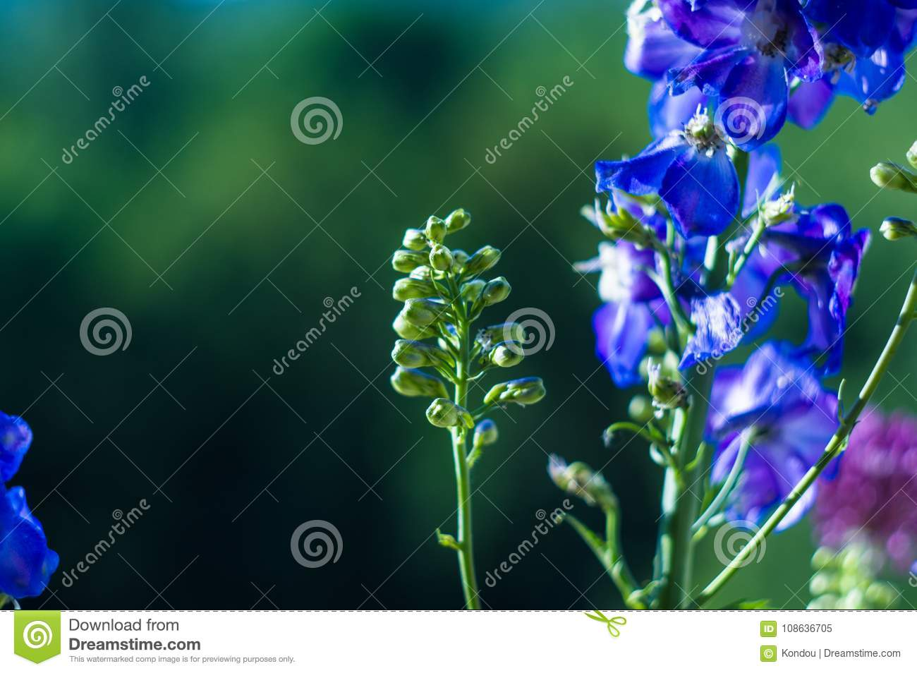 A bouquet of bright spring flowers of various types stock image download a bouquet of bright spring flowers of various types stock image image of blooming mightylinksfo