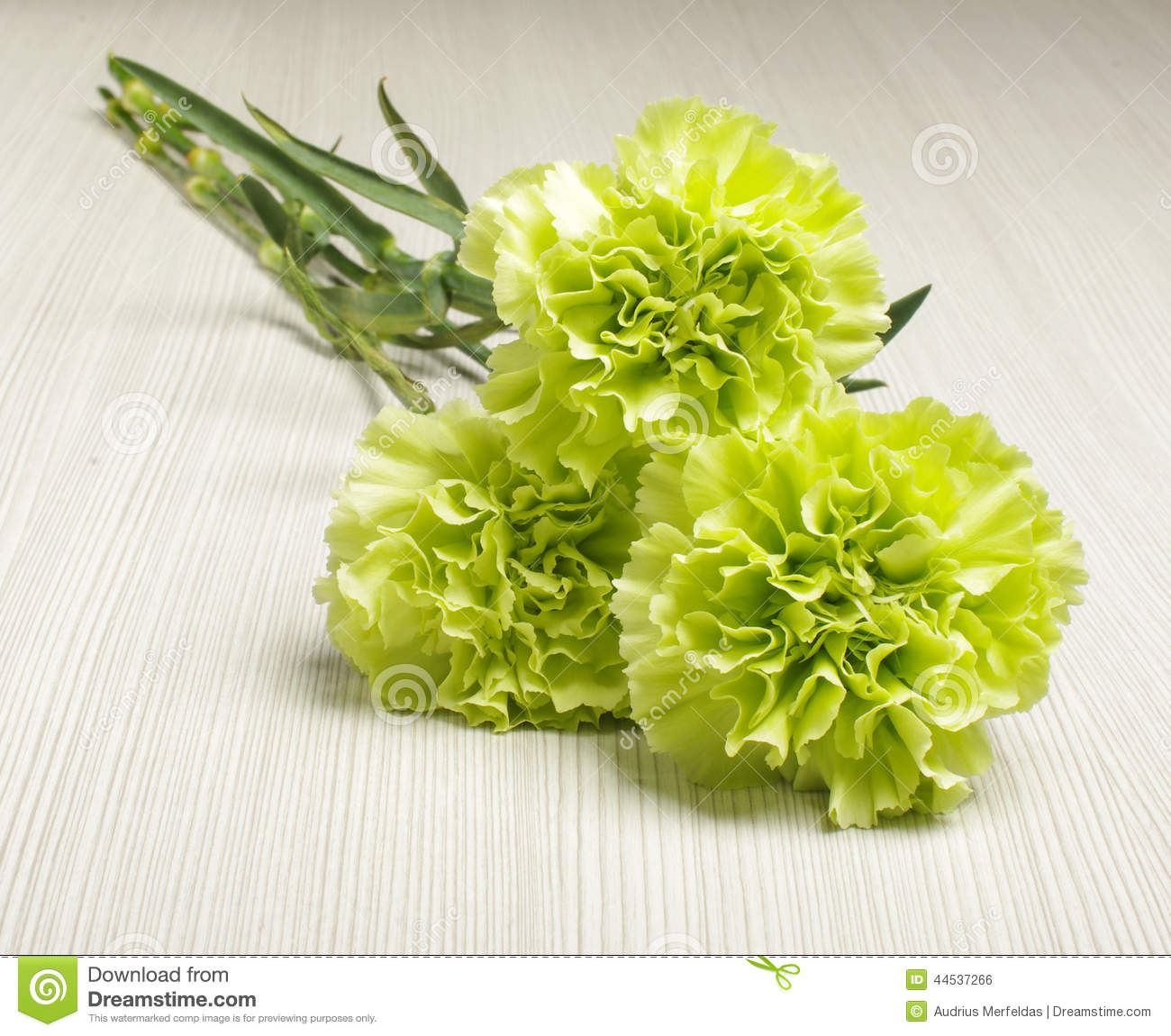 Bouquet Of Carnation Flowers On The Bright Wooden Floor Low Angle ...