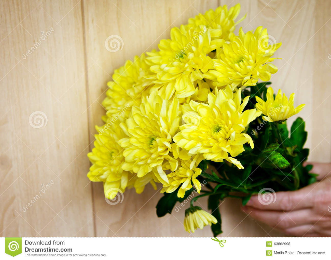 Bouquet Of Chrysanthemum Stock Photo - Image: 63862998