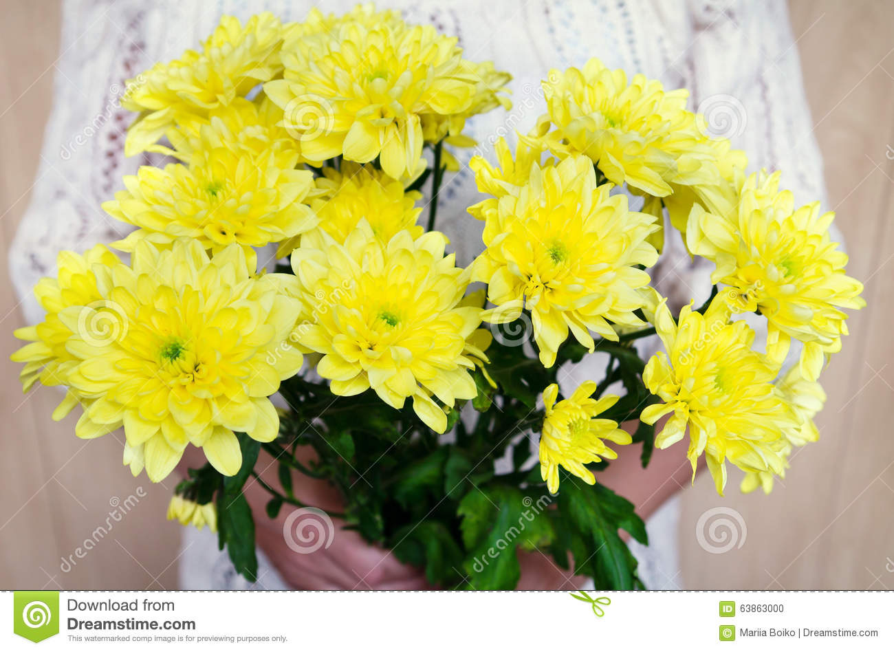 Bouquet Of Chrysanthemum Stock Photo - Image: 63863000