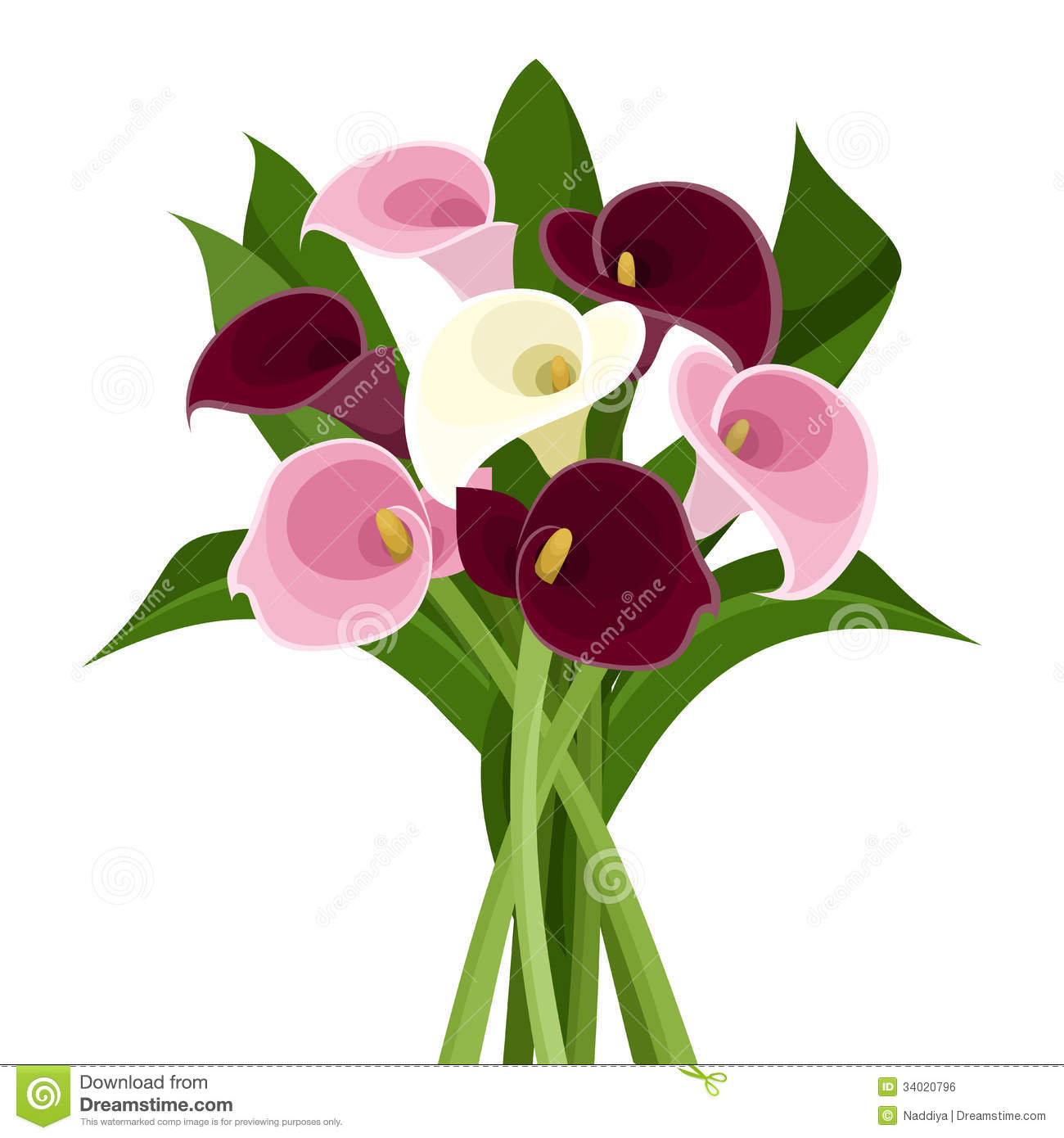Bouquet Colored Calla Lilies Royalty Free Stock Image Image