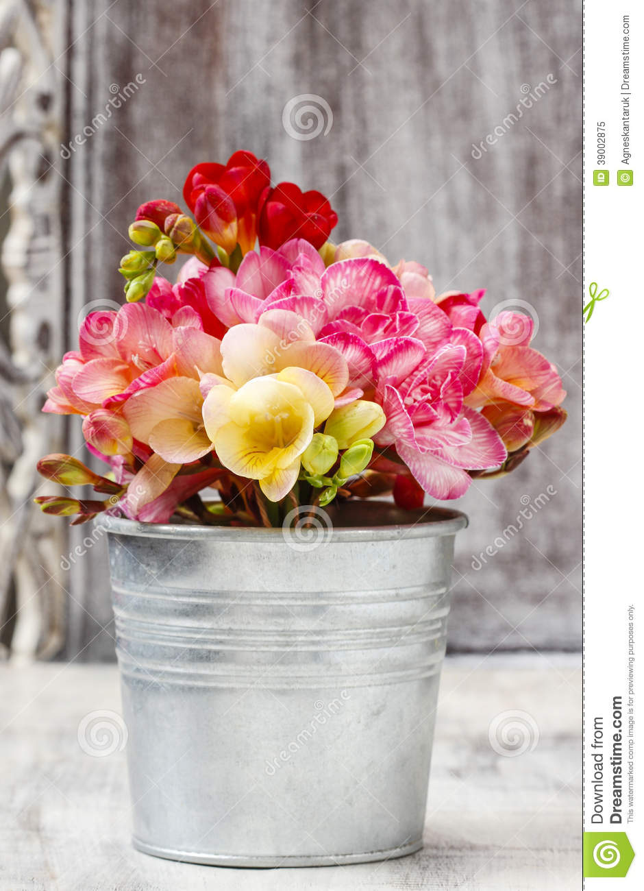 Bouquet of colorful freesia flowers stock image image for Bucket of flowers papercrafting