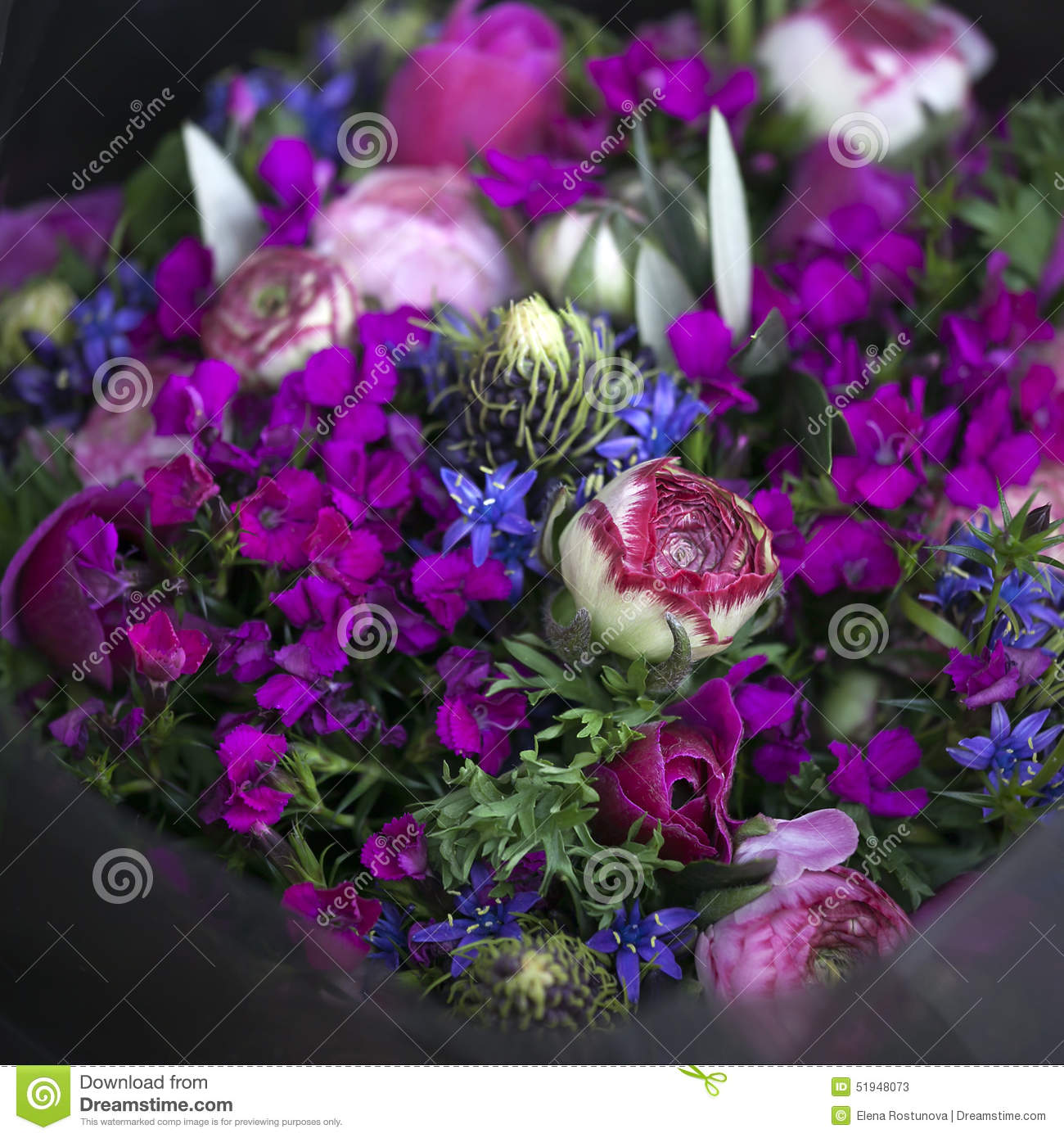 Bouquet Of Colorful Spring Flowers Stock Image Image Of Ranunculus Flower 51948073