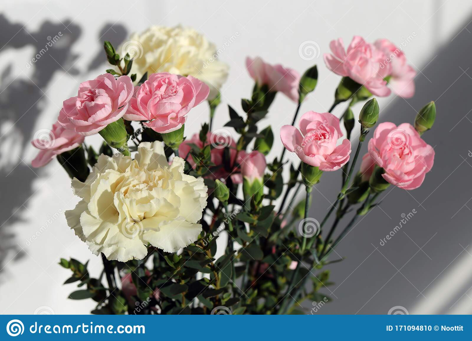 Bouquet Of Cute White And Pastel Pink Dianthus Chrysanthemum And Rose Flowers Stock Photo Image Of Green Flowers 171094810