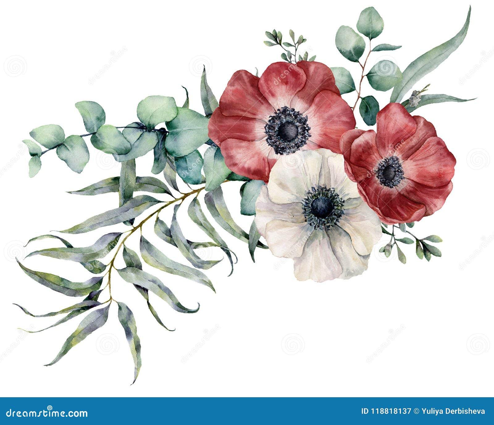 Feuille D Eucalyptus Bouquet bouquet d'anémone d'aquarelle fleurs rouges et blanches
