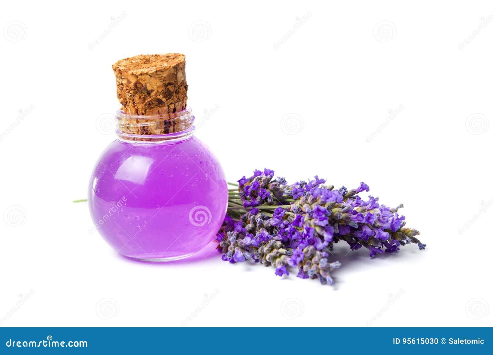 Bouquet d essence de lavande et de fleur d isolement